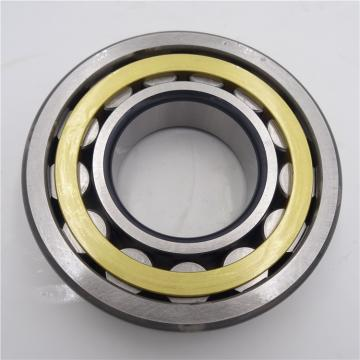 AST GAC140S plain bearings