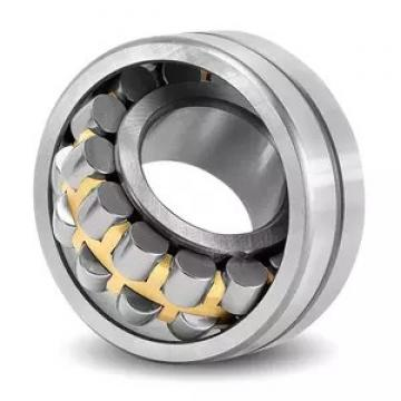 AST NU203 EM1A cylindrical roller bearings